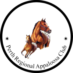 Perth Regional Appaloosa Club